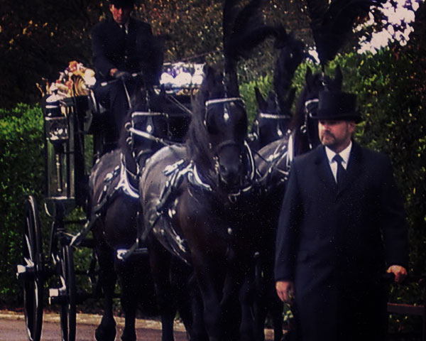 horse drawn funeral hastings east sussex