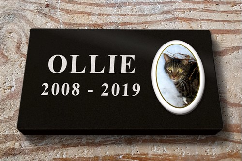 <alt> pet memorial black granite machine cut lettering cat memorial with photo plaque, Hastings, St Leonards, Bexhill East Sussex </>