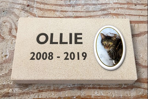 <alt> pet memorial yorkstone cat machine cut lettering memorial with photo plaque Hastings, St Leonards, Bexhill East Sussex </>